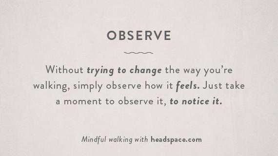 o-observe-5701